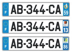 French fake number plates increase