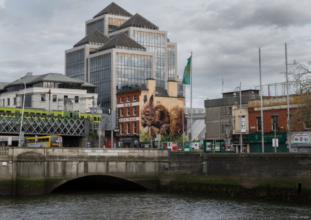 Giant red squirrel sculpture in central Dublin