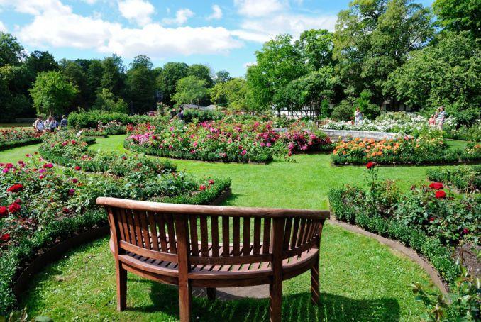 Egeskov Castle rose garden