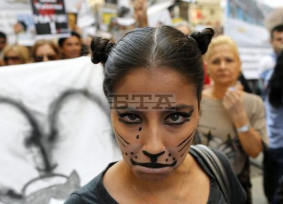 Animal lovers protest new law - image 2