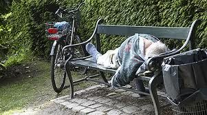 Copenhagen makes space for homeless in Assistens Kirkegard cemetery - image 2
