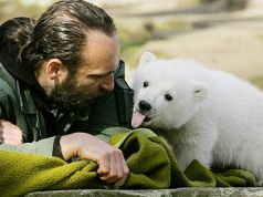 Berlin wins rights to Knut the Polar Bear