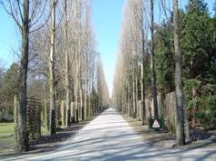 Copenhagen makes space for homeless in Assistens Kirkegard cemetery