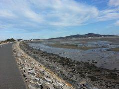New cycle path at Dublin Bay