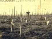 Belgium appeals for world war one documents
