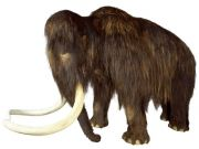 Mammoths - Giants from Russia