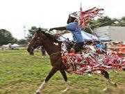 Mohamed Bourouissa: Horseday
