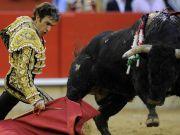 Spain's top court overturns Catalonia bullfighting ban