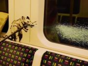 Banksy: coronavirus-inspired art on London Tube
