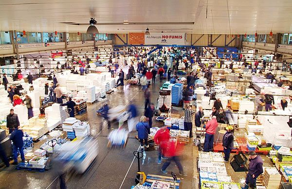 Barcelona to remodernise central fish market wanted in for Fish market jersey city