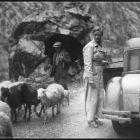 Marianne Breslauer: Photographs 1927-1938