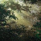 Landscape Still Life Portrait